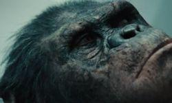 《猩球崛起:黎明之战》七大解惑 彩蛋借鉴《教父》