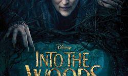 《魔法黑森林》海报发布 梅丽尔·斯特里普巫婆造型抢眼
