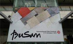 韩国釜山电影节华语风头强劲  关注电影全产业链