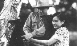 老上海电影发展史:荣誉史、人文史、改革史