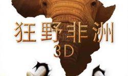 纪录片进院线任重道远  《狂野非洲》首周末票房540万