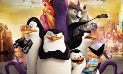 动画电影《马达加斯加的企鹅》首周末票房近7000万