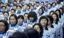 韩国一周票房:《星际穿越》夺冠,《购物车》首周居亚