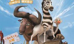 2014年最后一部3D动画电影《斑马总动员》定档12月31日