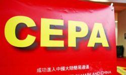 香港电影发展局:抓住广东市场是现时港产片的重点
