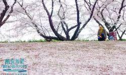 电影《陪安东尼度过漫长岁月》将于11月13日全国公映