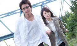 日本漫画改编电影《只有我不存在的城市》明年3月19日日本上映