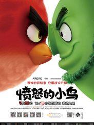 《愤怒的小鸟》520上映 三大看点全揭秘
