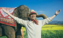 电影《我的宠物是大象》西双版纳杀青