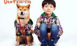 中日打造萌宠电影《Uta 不是流浪狗》正在上海热拍