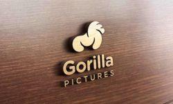 大猩猩电影坚持以内容为核心 打造高质影视佳品