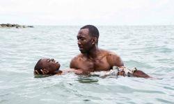 为什么《月光男孩》应该赢得奥斯卡最佳影片?