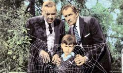 福克斯计划重拍1958年恐怖片《变蝇人》  将由J·D·迪拉德执导