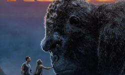 """电影《金刚:骷髅岛》:两怪兽争夺骷髅岛""""大哥""""之位"""