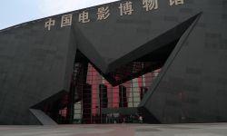 国际电影人:中国影业产业发展呈现多样化和国际化