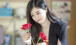 上海电视节白玉兰奖入围名单公布 《欢乐颂》获八项提名领跑
