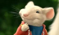 让大人也点头的儿童电影才能算是一部良心作品