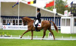 奥运骑士华天助力推广史诗马秀《特洛伊》