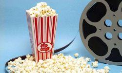 中国电影产业分众化现形  亟待补足行业人才缺口
