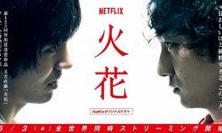 电影版《火花》发布预告片 年底日本上映