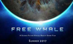 《Free Whale》制作人专访:做VR,一直都感觉很孤独