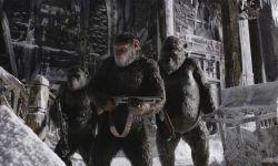 科幻动作巨制《猩球崛起3》9.15登陆院线 日前发布海报及预告