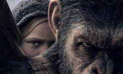 """电影工业突飞猛进 全球观众都爱看""""来自猩猩的你"""""""