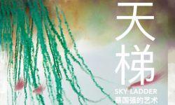 《天梯:蔡国强的艺术》终极预告曝光 邓文迪出镜推荐