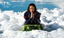 电影《七十七天》发布剧情版预告、海报及多张剧照