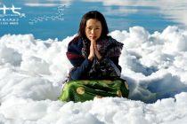 极地探险电影《七十七天》首爆角色海报和人物特辑