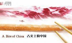 《舌尖上的中国》总导演陈晓卿正式离职央视