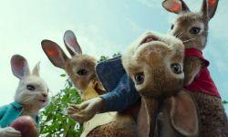 真人CG喜剧《比得兔》今日曝光全新国际版预告片