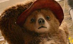 霍思燕为《帕丁顿熊2》打Call 英式喜剧冒险电影回归