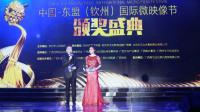 2017中国—东盟(钦州)国际微映像节完美落幕!