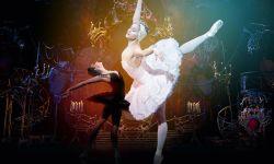 首届国际芭蕾电影展于北京百老汇电影中心举行开幕式