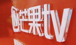 湖南卫视是整个中国电视行业的缩影