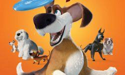 戈雅提名片《狗狗的疯狂假期》确定引进 暖心忠犬大冒险