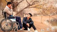 电影《坏爸爸》可能是中国影史上最大的诈骗案!