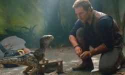 《侏罗纪世界3》官宣定档 特莱沃若联合执笔剧本
