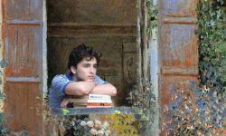 当《请以你的名字呼唤我》与莫奈名画相遇 艺术气息十足