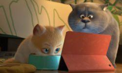 追光动画电影《猫与桃花源》曝父子版海报预告