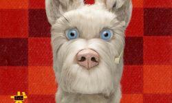 动画电影《犬之岛》中文版海报:八只呆萌的狗狗集体亮相