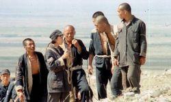 著名导演张军钊先生逝世  曾拍摄电影《一个和八个》