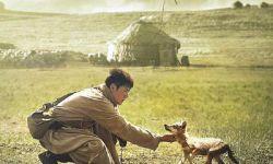 中国电影吸引全球电影人参与合拍  文化自信须坚守