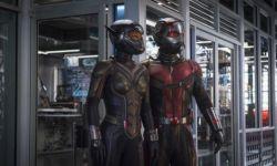 《蚁人2:黄蜂女现身》口碑解禁  烂番茄新鲜度90%