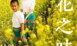 """中国参与和主办国际性电影节成展示""""中国故事""""新窗口"""