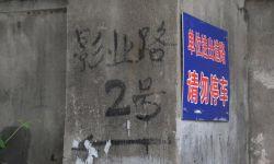 浙江电影制片厂老厂房将被拆光 曾见证浙江电影创作丰硕成果