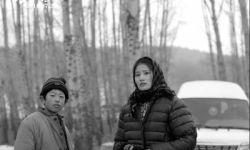 电影《北方一片苍茫》:用幽默荒诞消解生活的痛