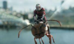 电影《蚁人2:黄蜂女现身》发布IMAX主创特辑