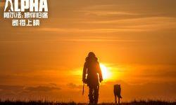 冒险电影《阿尔法:狼伴归途》曝光全新海报及预告